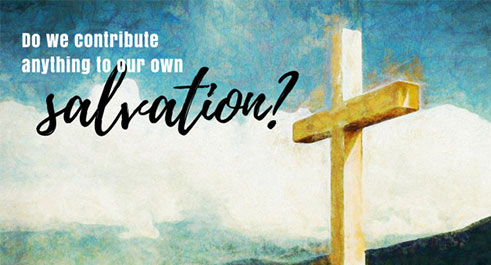 Do we Contribute Anything to Our Own Salvation?
